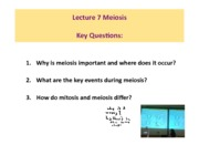 PreLecture_7_meiosis(1)_1to20 by UPAD