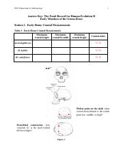 lab 10 - Fossils II Answer Key