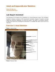 60-0038-00-02 Axial and Appendicular Skeleton_RPT (2)