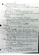 Class Notes - Theories of War and Conflict
