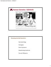 19DevelopmentGenetics_2slides