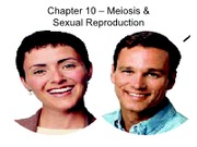 "H - C10 â€"" Meiosis & Sexual Reproduction"