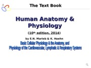 Human Body (Topic 1).ppt