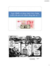 Lecture 8 - Yuan-Top International Currency