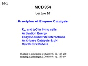 MCB 354 Principles of Enzyme Catalysis Lecture