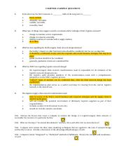 Sample Questions - Chapt. 4