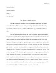 Into the wild essay.docx