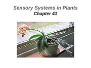 Lecture 15-Plant Sensory Systems