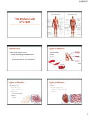 The Muscular System_Studnt Version.pdf