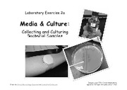 Lab__2a_Media___Culture_-_Collecting_Bacterial_Samples