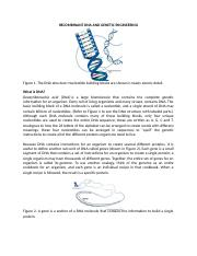 Recombinant DNA and Genetic Engineering.docx