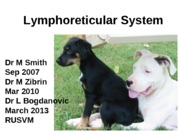 19_Lymphatic_System_Spring_2013 (1)