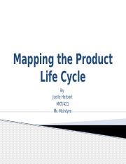 Mapping the Product Life Cycle Presentation.pptx