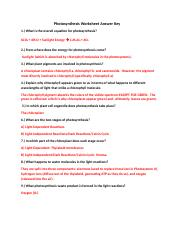Photosynthesis worksheet Answers - Names PRINCIPLES OF ...