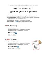 Polyatomic Ions- Nick the Camel Study Guide
