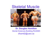 Lecture 11 - Skeletal Muscle