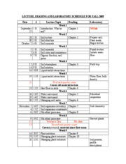 Lecture-lab_schedule 2009