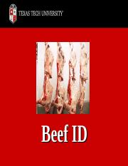 Beef_ID_PowerPoint