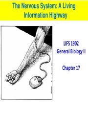 Nervous system students.pdf