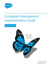 salesforce_campaign_implementation_guide