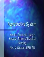 AP_Reproductive_System_Power_Point.ppt