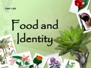 FNP 100 F13 Food and Identity Bb