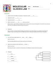 Donovan.1100.Molecular Clocks Lab.docx