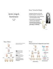 Lecture_9_Genetic_Linkage_and_Recombination_Handout.pdf