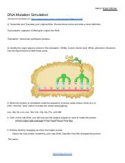 DNA Mutation Simulation Worksheet.pdf - Name Ariana ...