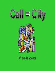 cellcity_explanation.pdf