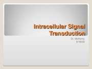 9-18-09 Intracellular Signal Transduction