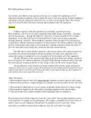 Cellular respiration essay