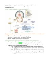 LO's Neurons_Cellular and Network Properties .doc