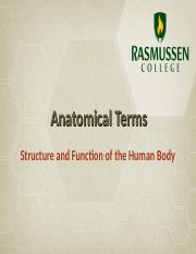 Anatomical Terms and Body Planes.ppt