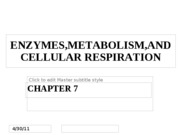Chapter 7 - Enzymes, Metabolism and Cellular Respiration