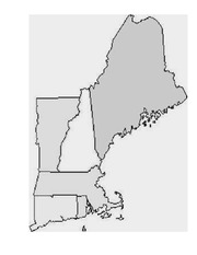 New England Blank Map