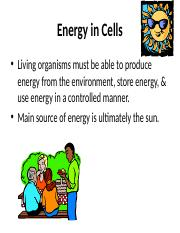 Energy in Cells - Brenden Watkins (1)