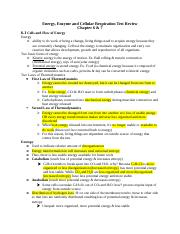 Energy, Enzyme and Cellula Respiration Test Review.docx