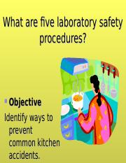 safety lab sheet