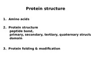 LS2Protein Structure.ppt