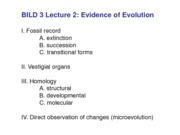 Lec 2 Bild 3 2013 Evidence of Evolution