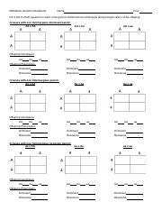 punnett square worksheet - Mendelian Genetics Worksheet Name