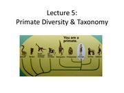 Lecture 5 Primate Diversity and Taxonomy