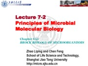 09-1 Lecture 7-2 Essentials of Molecular Biology