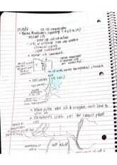 Cell to Cell Communication Notes