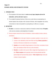 tortora outline chapter 16 for power point (11th ed.)