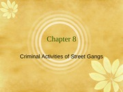 Chap8-CriminalActivities