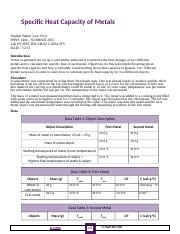Example Lab Report(1)