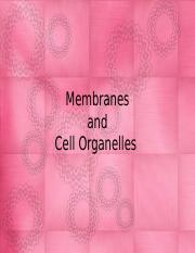 Membranes and organelles