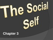 Social Psychology Chapter 3 PPT (4)